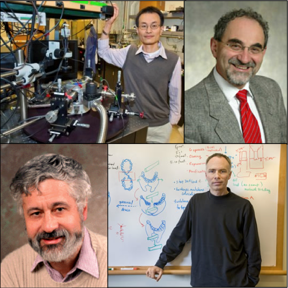 (clockwise from top left) Peidong Yang, Eli Yablonovitch, James Berger, Bernard Sadoulet were elected to the 2012 class of the American Academy of Arts and Sciences.