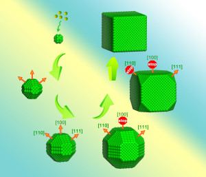 Berkeley Lab researchers found that differences in ligand mobility during crystallization cause the low index facets - {100}, {110} and {111} – to stop growing at different times, resulting in the crystal's final cubic shape. (Image courtesy of Haimei Zheng group)
