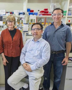 Thirdhand Smoke Research Group in Potter Street Lab - Altaf Sarker, Mohamad Sleiman, Lara Gundel, Bo Hang and Hugo Destaillats.