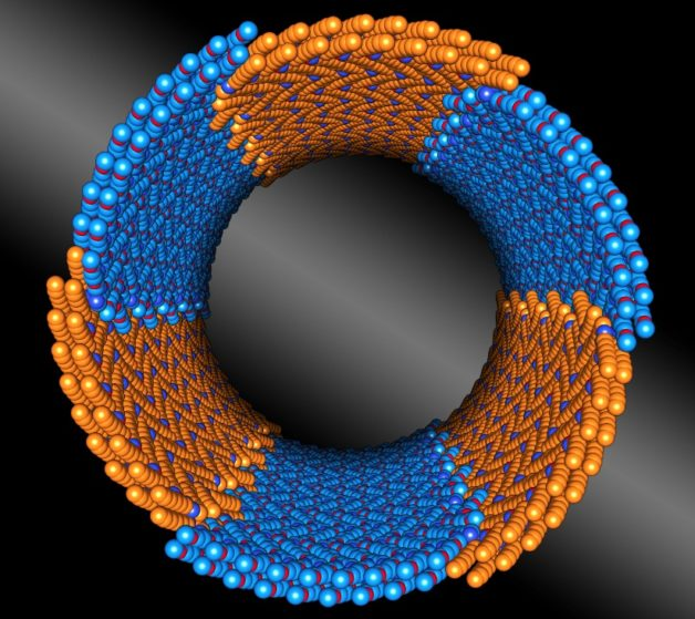 5-peptoid-nanotube-cropped