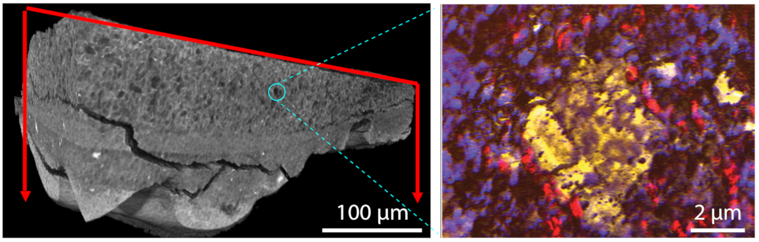 Images: Paint sample imaging at the microscale and nanoscale.